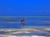 Zanzibar, África